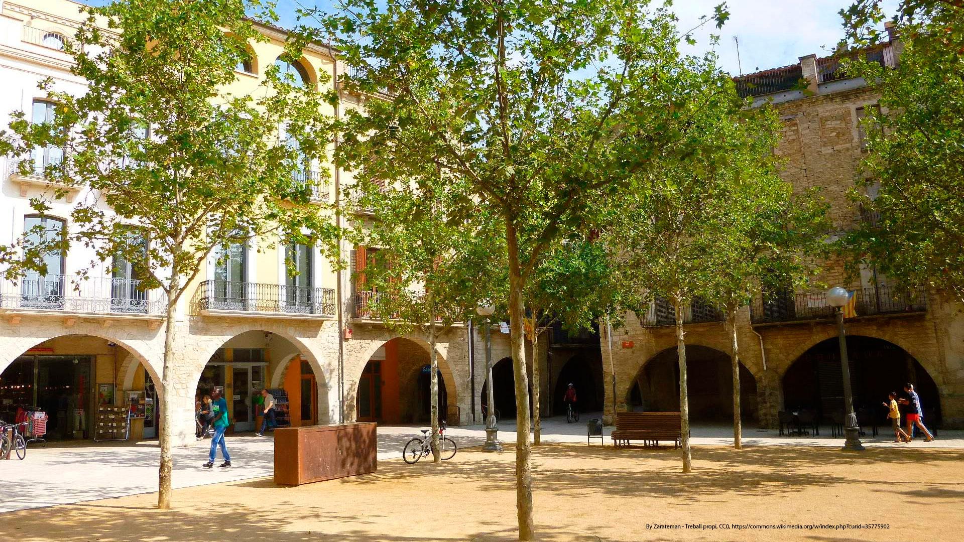Vaciado de pisos y locales en Banyoles